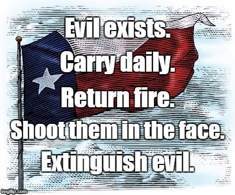 Carry Daily.  | Evil exists. Extinguish evil. Return fire. Shoot them in the face. Carry daily. | image tagged in guns | made w/ Imgflip meme maker