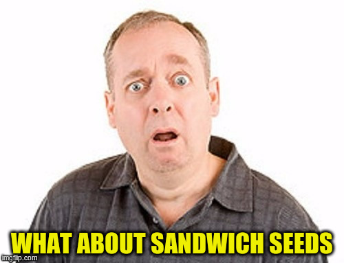 WHAT ABOUT SANDWICH SEEDS | made w/ Imgflip meme maker