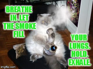Practice Makes Perfect...Especially for the Veterans Nationwide | BREATHE IN. LET THE SMOKE FILL YOUR LUNGS. HOLD. EXHALE. | image tagged in memes,practice,smoke weed,breathe,hold,exhale | made w/ Imgflip meme maker