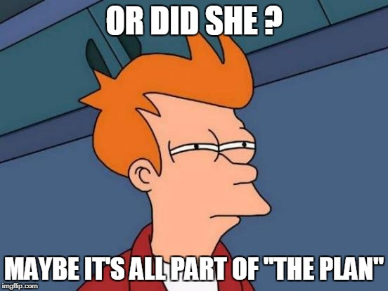 "Futurama Fry Meme | OR DID SHE ? MAYBE IT'S ALL PART OF ""THE PLAN"" 