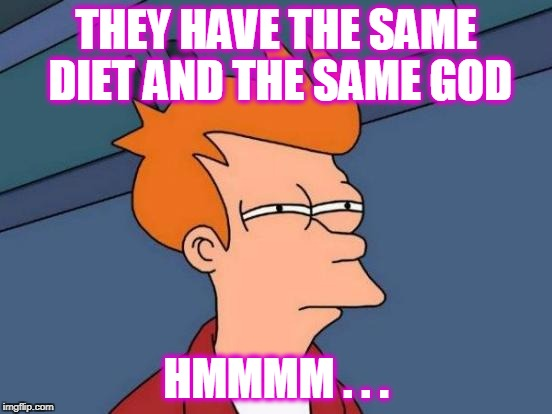 Futurama Fry Meme | THEY HAVE THE SAME DIET AND THE SAME GOD HMMMM . . . | image tagged in memes,futurama fry | made w/ Imgflip meme maker