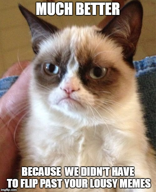 Grumpy Cat Meme | MUCH BETTER BECAUSE  WE DIDN'T HAVE TO FLIP PAST YOUR LOUSY MEMES | image tagged in memes,grumpy cat | made w/ Imgflip meme maker