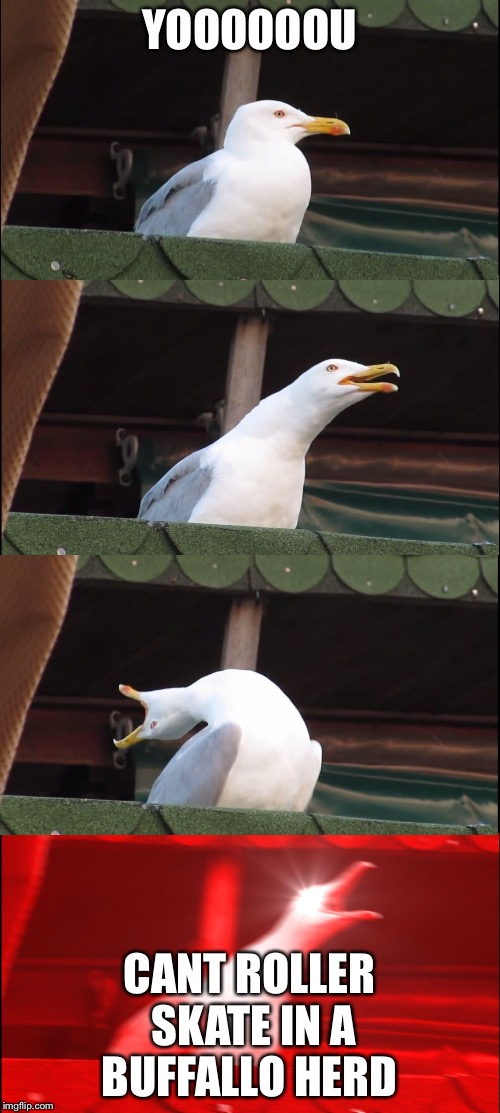 Inhaling Seagull Meme | YOOOOOOU CANT ROLLER SKATE IN A BUFFALLO HERD | image tagged in inhaling seagull | made w/ Imgflip meme maker