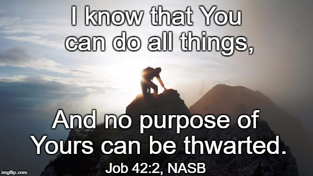 I know that You can do all things, And no purpose of Yours can be thwarted. Job 42:2, NASB | image tagged in goals | made w/ Imgflip meme maker
