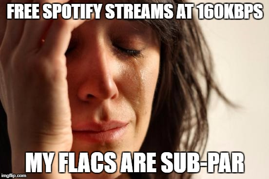 First World Problems Meme | FREE SPOTIFY STREAMS AT 160KBPS MY FLACS ARE SUB-PAR | image tagged in memes,first world problems | made w/ Imgflip meme maker