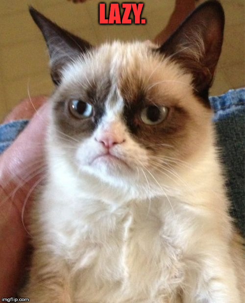 Grumpy Cat Meme | LAZY. | image tagged in memes,grumpy cat | made w/ Imgflip meme maker