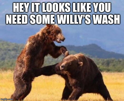 HEY IT LOOKS LIKE YOU NEED SOME WILLY'S WASH | made w/ Imgflip meme maker