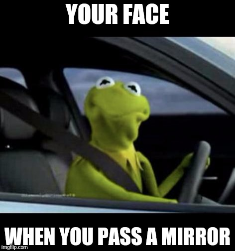 Kermit Driving |  YOUR FACE; WHEN YOU PASS A MIRROR | image tagged in kermit driving | made w/ Imgflip meme maker