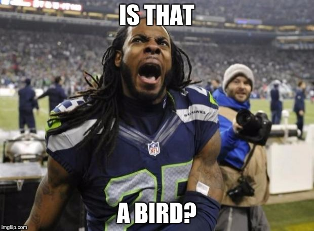 Seahawks Richard Sherman | IS THAT A BIRD? | image tagged in seahawks richard sherman | made w/ Imgflip meme maker