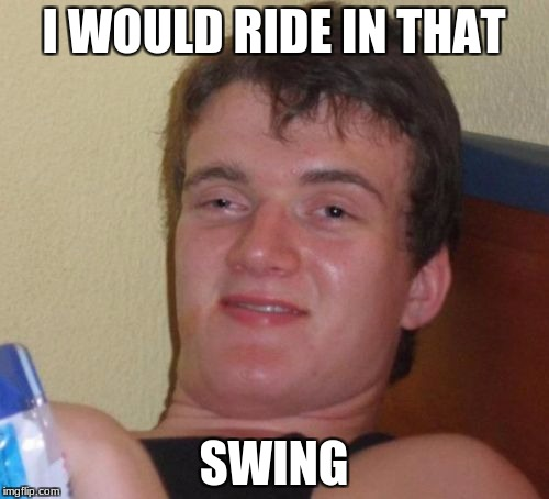 10 Guy Meme | I WOULD RIDE IN THAT SWING | image tagged in memes,10 guy | made w/ Imgflip meme maker