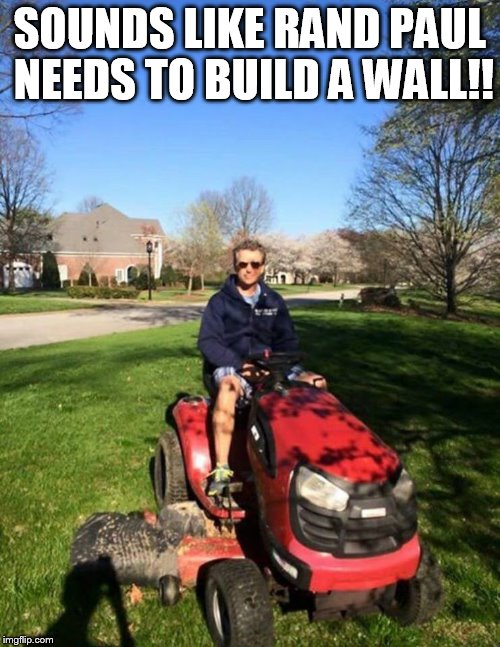 build a wall | SOUNDS LIKE RAND PAUL NEEDS TO BUILD A WALL!! | image tagged in rand paul | made w/ Imgflip meme maker