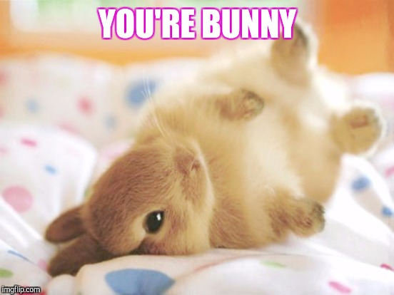YOU'RE BUNNY | made w/ Imgflip meme maker