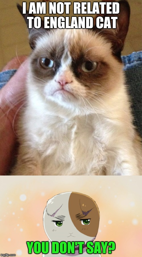 He is not England. | I AM NOT RELATED TO ENGLAND CAT YOU DON'T SAY? | image tagged in memes,grumpy cat,england,hetalia,you don't say | made w/ Imgflip meme maker