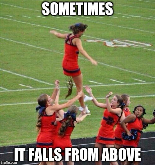 SOMETIMES IT FALLS FROM ABOVE | made w/ Imgflip meme maker