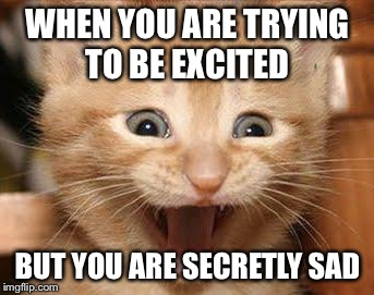 Excited Cat Meme | WHEN YOU ARE TRYING TO BE EXCITED BUT YOU ARE SECRETLY SAD | image tagged in memes,excited cat | made w/ Imgflip meme maker