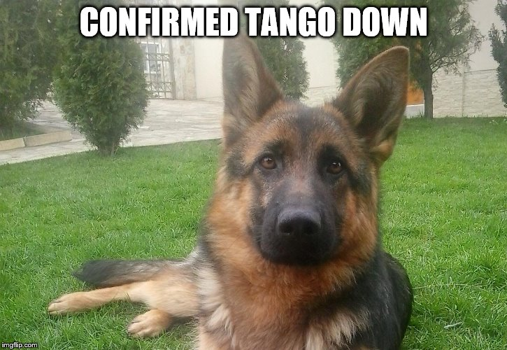 CONFIRMED TANGO DOWN | made w/ Imgflip meme maker