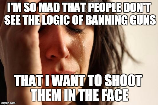First World Problems Meme | I'M SO MAD THAT PEOPLE DON'T SEE THE LOGIC OF BANNING GUNS THAT I WANT TO SHOOT THEM IN THE FACE | image tagged in memes,first world problems | made w/ Imgflip meme maker