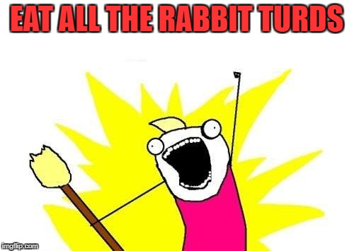 X All The Y Meme | EAT ALL THE RABBIT TURDS | image tagged in memes,x all the y | made w/ Imgflip meme maker