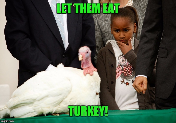White House Turkey | LET THEM EAT TURKEY! | image tagged in white house turkey | made w/ Imgflip meme maker