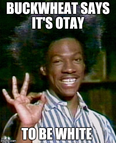 BUCKWHEAT SAYS IT'S OTAY TO BE WHITE | image tagged in buckwheat otay | made w/ Imgflip meme maker