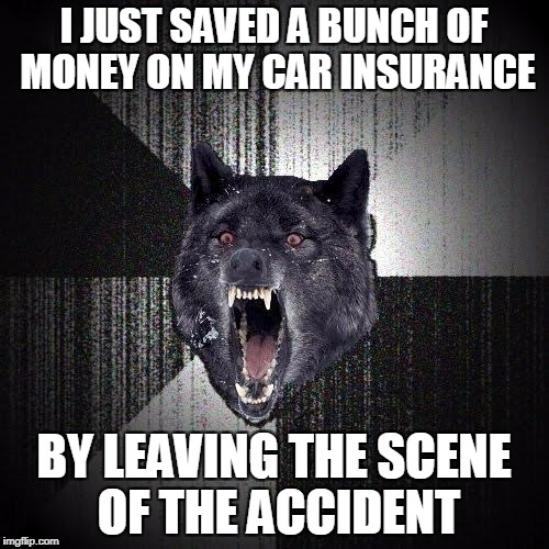 Insanity Wolf Meme | I JUST SAVED A BUNCH OF MONEY ON MY CAR INSURANCE BY LEAVING THE SCENE OF THE ACCIDENT | image tagged in memes,insanity wolf | made w/ Imgflip meme maker