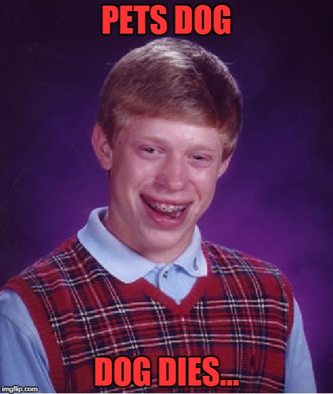 Bad Luck Brian Meme | PETS DOG DOG DIES... | image tagged in memes,bad luck brian | made w/ Imgflip meme maker