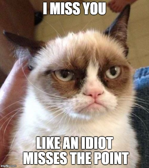Grumpy Cat Reverse Meme | I MISS YOU LIKE AN IDIOT MISSES THE POINT | image tagged in memes,grumpy cat reverse,grumpy cat | made w/ Imgflip meme maker