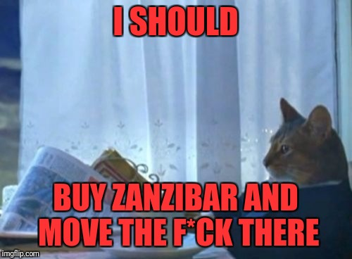 I Should Buy A Boat Cat Meme | I SHOULD BUY ZANZIBAR AND MOVE THE F*CK THERE | image tagged in memes,i should buy a boat cat | made w/ Imgflip meme maker