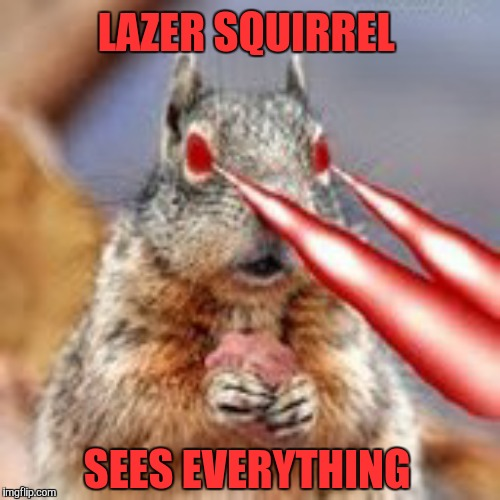 LAZER SQUIRREL SEES EVERYTHING | made w/ Imgflip meme maker