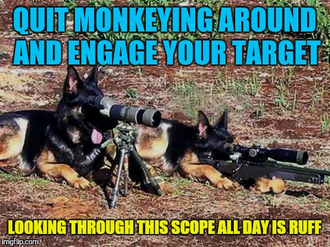 QUIT MONKEYING AROUND AND ENGAGE YOUR TARGET LOOKING THROUGH THIS SCOPE ALL DAY IS RUFF | made w/ Imgflip meme maker