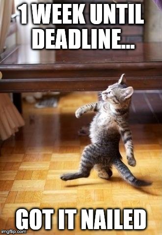 Cool Cat Stroll Meme | 1 WEEK UNTIL DEADLINE... GOT IT NAILED | image tagged in memes,cool cat stroll | made w/ Imgflip meme maker