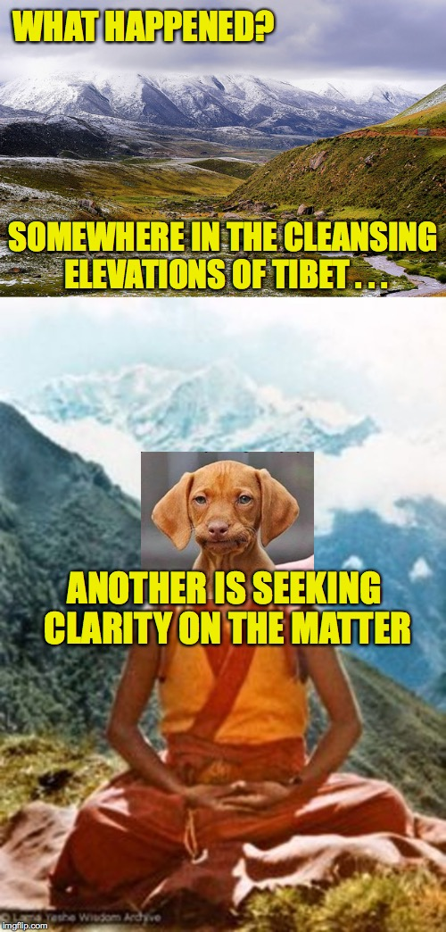 WHAT HAPPENED? ANOTHER IS SEEKING CLARITY ON THE MATTER SOMEWHERE IN THE CLEANSING ELEVATIONS OF TIBET . . . | made w/ Imgflip meme maker