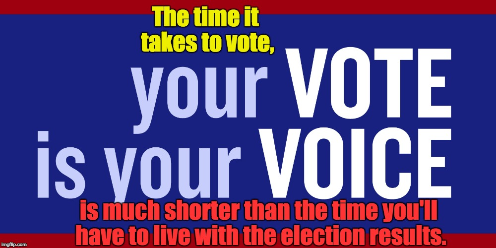 Vote | The time it takes to vote, is much shorter than the time you'll have to live with the election results. | image tagged in voting,elections,participatedemocracy | made w/ Imgflip meme maker