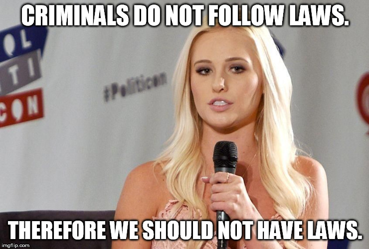Logic for Dummies | CRIMINALS DO NOT FOLLOW LAWS. THEREFORE WE SHOULD NOT HAVE LAWS. | image tagged in dumb blonde | made w/ Imgflip meme maker