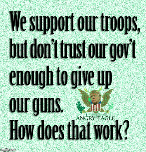 Support our troops | image tagged in trustourtroop,humor,angry eagle,guns | made w/ Imgflip meme maker