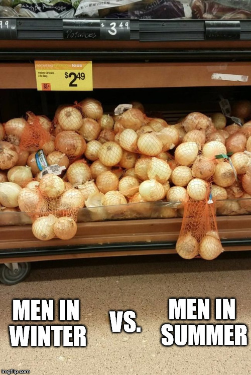 MEN IN SUMMER MEN IN WINTER VS. | image tagged in men,winter,summer,onions | made w/ Imgflip meme maker