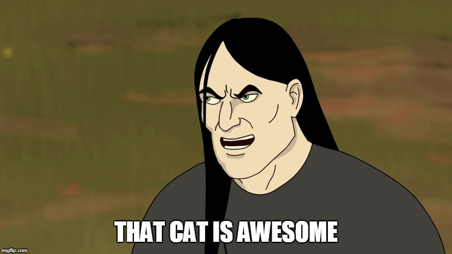 THAT CAT IS AWESOME | made w/ Imgflip meme maker