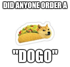 "dogo | DID ANYONE ORDER A ""DOGO"" 