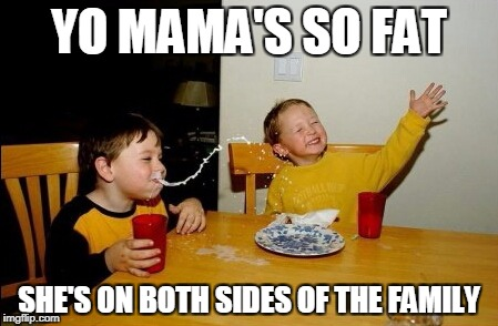 Yo Mamas So Fat Meme | YO MAMA'S SO FAT SHE'S ON BOTH SIDES OF THE FAMILY | image tagged in memes,yo mamas so fat | made w/ Imgflip meme maker