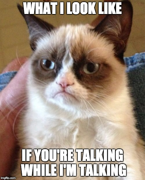 Grumpy Cat Meme | WHAT I LOOK LIKE IF YOU'RE TALKING WHILE I'M TALKING | image tagged in memes,grumpy cat | made w/ Imgflip meme maker