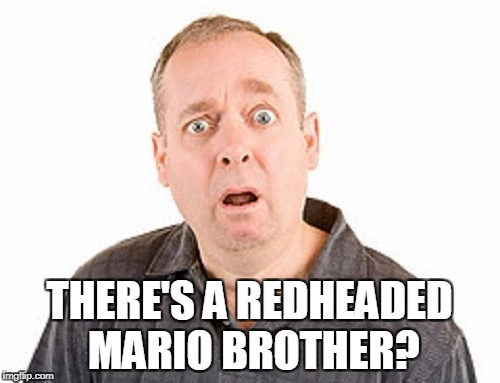 THERE'S A REDHEADED MARIO BROTHER? | made w/ Imgflip meme maker