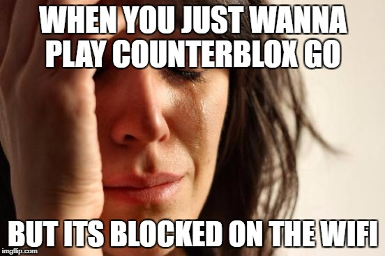 First World Problems Meme | WHEN YOU JUST WANNA PLAY COUNTERBLOX GO BUT ITS BLOCKED ON THE WIFI | image tagged in memes,first world problems | made w/ Imgflip meme maker