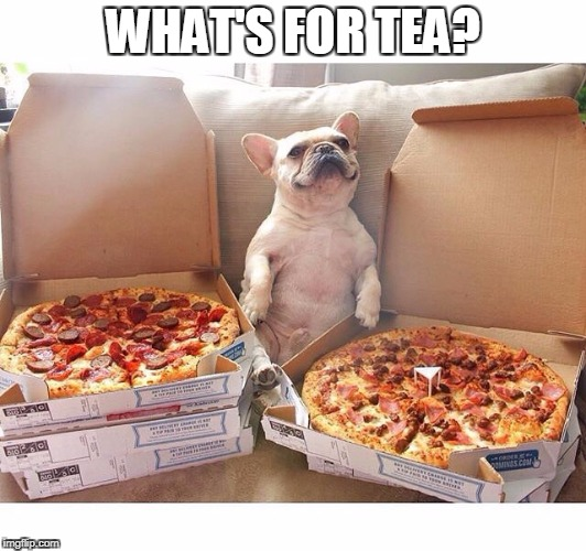 Pizza Dog | WHAT'S FOR TEA? | image tagged in pizza dog | made w/ Imgflip meme maker