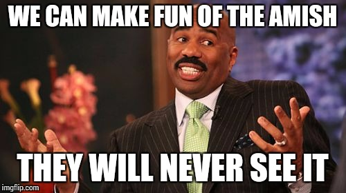 Steve Harvey Meme | WE CAN MAKE FUN OF THE AMISH THEY WILL NEVER SEE IT | image tagged in memes,steve harvey | made w/ Imgflip meme maker