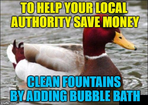 They'll thank you for it :) | TO HELP YOUR LOCAL AUTHORITY SAVE MONEY CLEAN FOUNTAINS BY ADDING BUBBLE BATH | image tagged in memes,malicious advice mallard,money,fountains | made w/ Imgflip meme maker