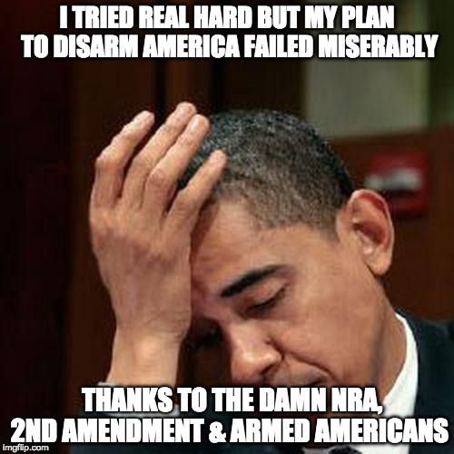Obama Facepalm 250px | I TRIED REAL HARD BUT MY PLAN TO DISARM AMERICA FAILED MISERABLY THANKS TO THE DAMN NRA, 2ND AMENDMENT & ARMED AMERICANS | image tagged in obama facepalm 250px | made w/ Imgflip meme maker