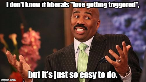 "Am I right? | I don't know if liberals ""love getting triggered"", but it's just so easy to do. 