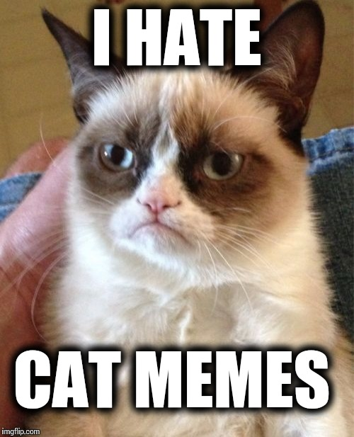 Grumpy Cat Meme | I HATE CAT MEMES | image tagged in memes,grumpy cat | made w/ Imgflip meme maker