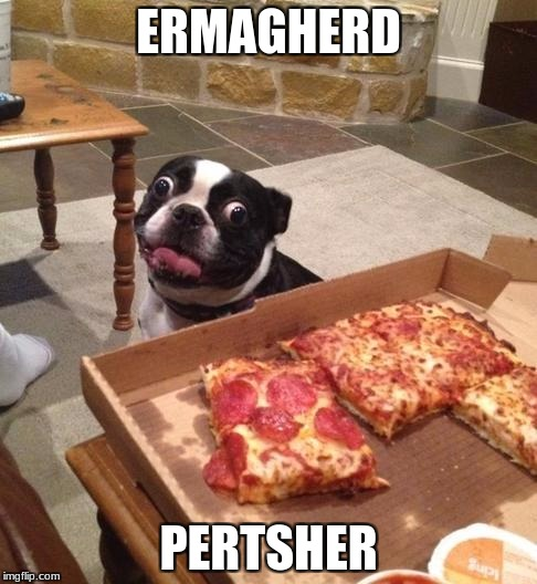 Hungry Pizza Dog | ERMAGHERD PERTSHER | image tagged in hungry pizza dog | made w/ Imgflip meme maker