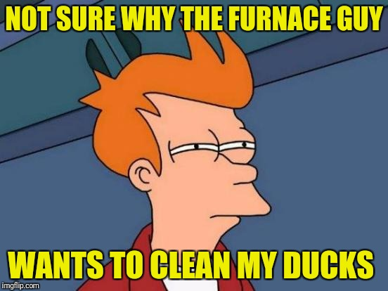 How does he even know they're dirty | NOT SURE WHY THE FURNACE GUY WANTS TO CLEAN MY DUCKS | image tagged in memes,futurama fry,furnace guy,ducks,ducts | made w/ Imgflip meme maker
